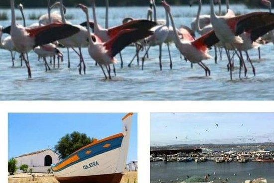 Algarve: 2 viagens em 2 dias