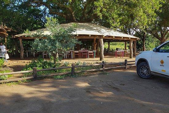 Tshokwane Picnic Site: Dining area