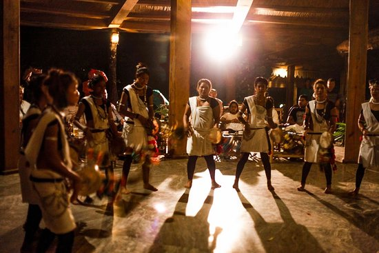 Well Nepal Treks: Tharu Cultural Dance Chitwan