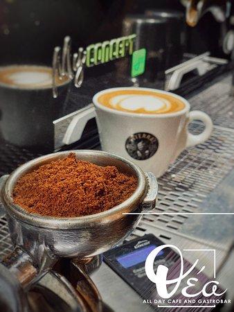 THEA: Coffee LAVAZZA TIERRA