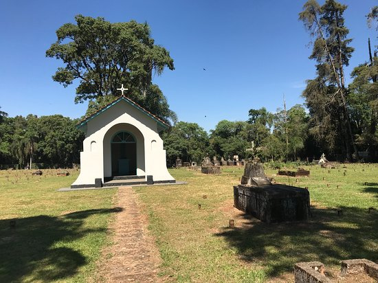 Cemiterio de Harmonia