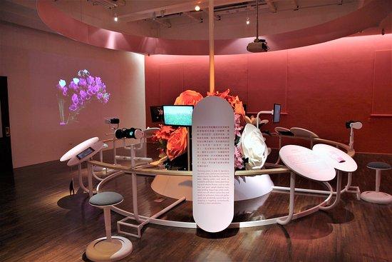 National Taiwan Museum: Saal mit Mikroskopen