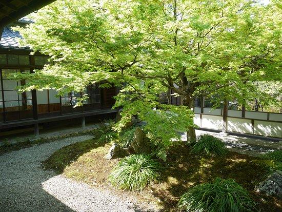 Chofu Mori Residence: 邸宅内の中庭