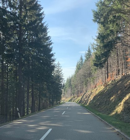 Driving through the Black Forest on the way to St. Valentin from Feldberg.  This is just 10 minutes from the restaurant.