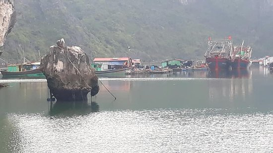 Dong Du Village: ocean junks