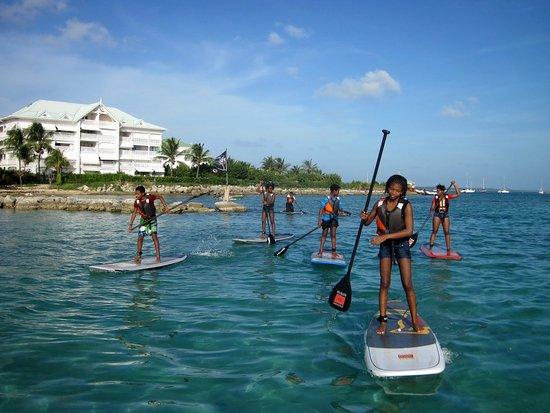 Le Moule, جوادلوب: Découverte SUP Mer et Mangrove au Moule