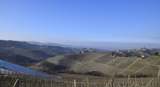 Langhe landscapes UNESCO