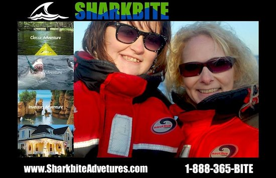 SharkBite Adventures