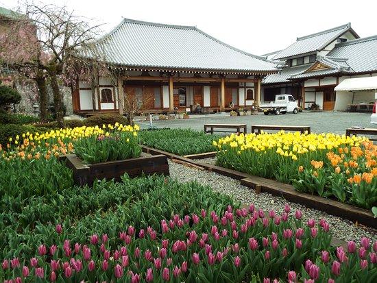 Senzo-ji Temple