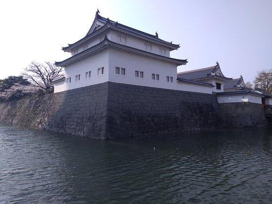 Istana Shizuoka: ここから見ると奇麗です