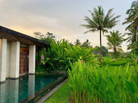 Top resort In Ubud