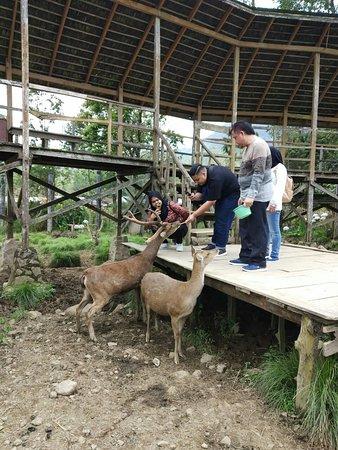 Kampung Cai Ranca Upas (Bandung) - 2019 Book in Destination - All