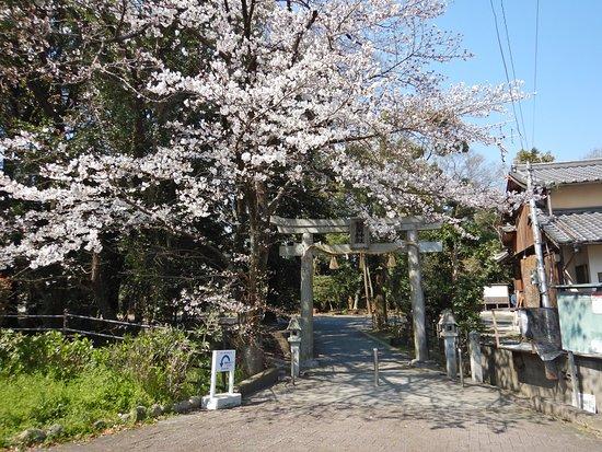Saguri Shrine