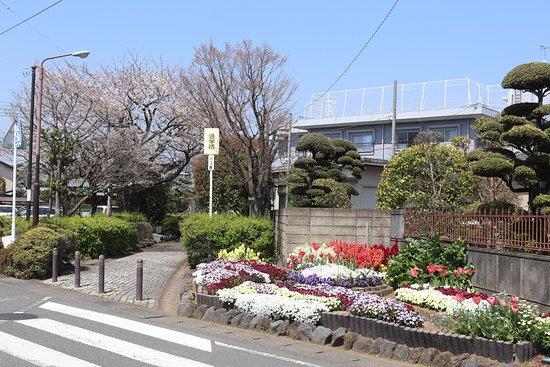 Ryokudo Park