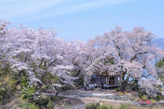 Tsurugi-cho, Japan: のどかな風景でした
