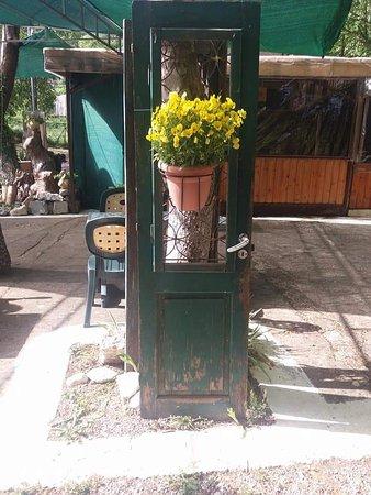 To Potami: Η ταβέρνα μας με τα λουλούδια της..