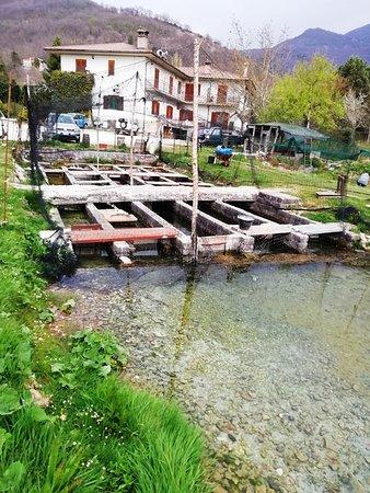 Rivodutri, İtalya: 養魚場