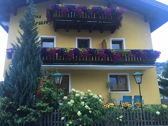 Salzburg, Østerrike: حديقه الحيوان وكوخ جميل من ريف سالزبورج وجوله بالعربه في سالزبورج