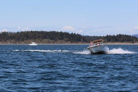 Victoria Boat Rentals