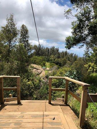 d9a7dceb06 Skyline Eco-Adventures Zipline Tours (Haleakala National Park ...