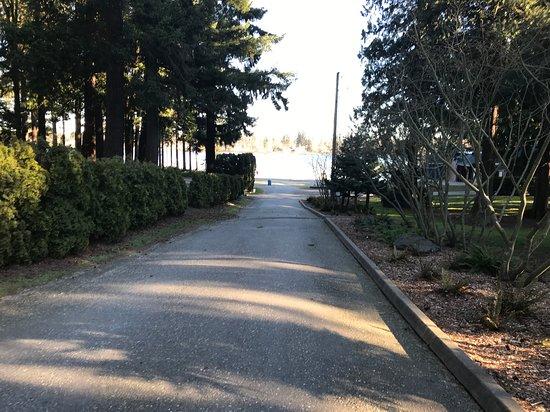 Thornton Sullivan Park