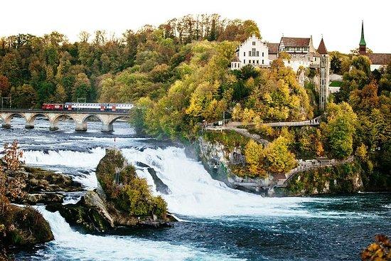Schwarzwald og Rhine Falls Dagstur...
