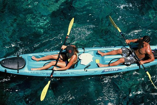 Snorkel, Kayak and Dolphin Experience...