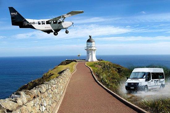Excursión de medio día a Cabo Reinga...