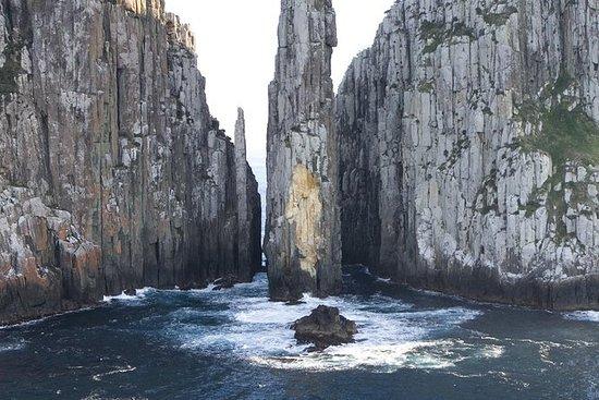 Excursión de un día a la península de...