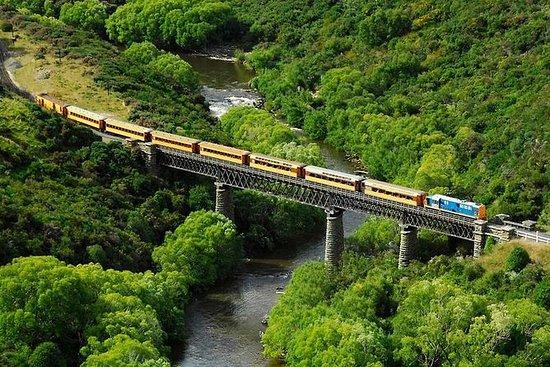 Taieri Gorge Railway y la excursión...