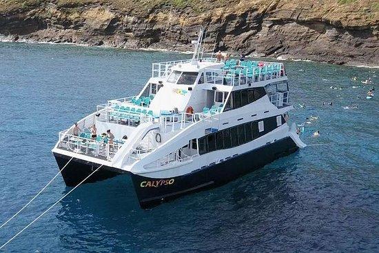Calypso的Molokini浮潜冒险