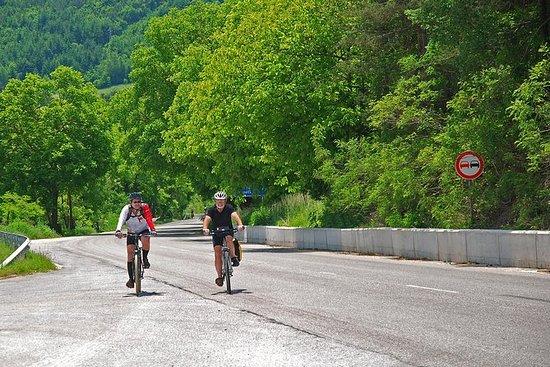 从普罗夫迪夫到罗多彼山脉的私人全日自行车之旅