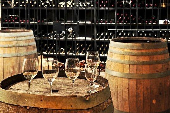 來自盧卡的托斯卡納山小團體半日葡萄酒之旅