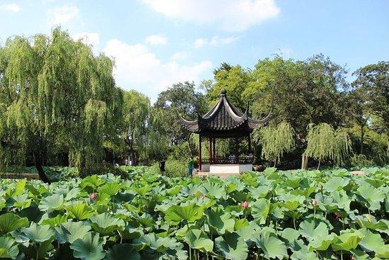 Suzhou Day Tour: Lion Grove Garden og...