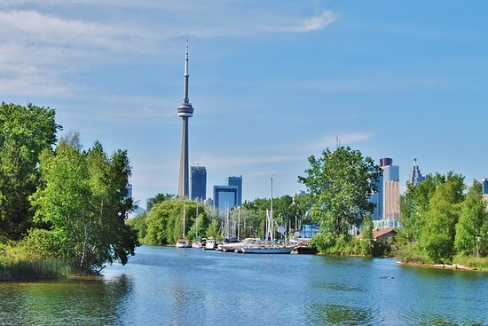 Excursión especial por Toronto