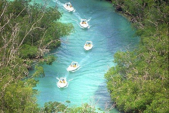 Tour con snorkeling, guida il tuo