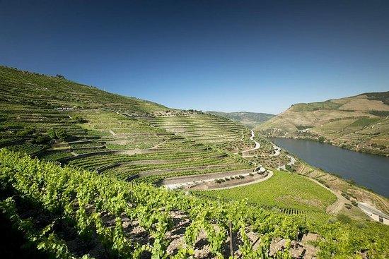 Viagem diurna ao Vale do Douro e de...