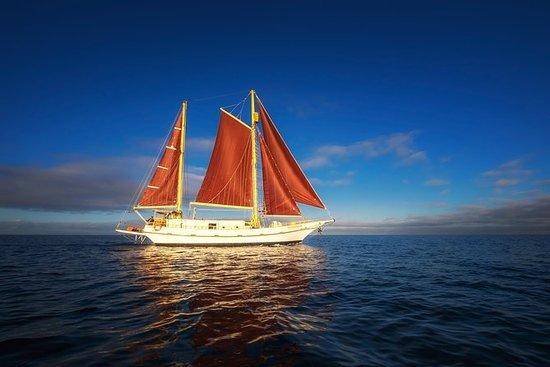 Crucero por la bahía de Port Phillip...