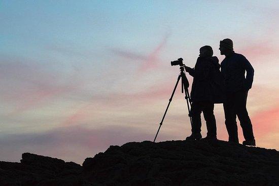 Privat Wellington Photography Tour