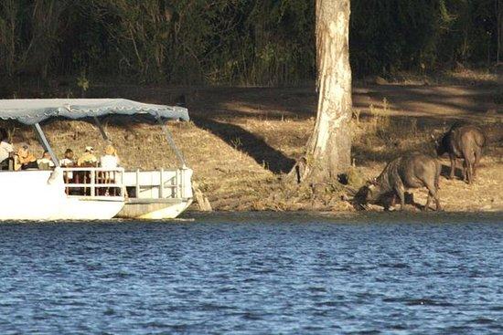 Chobe River的日落遊船與Kasane的酒店接送服務