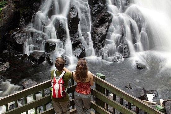 Tour guidato del Parco Nazionale