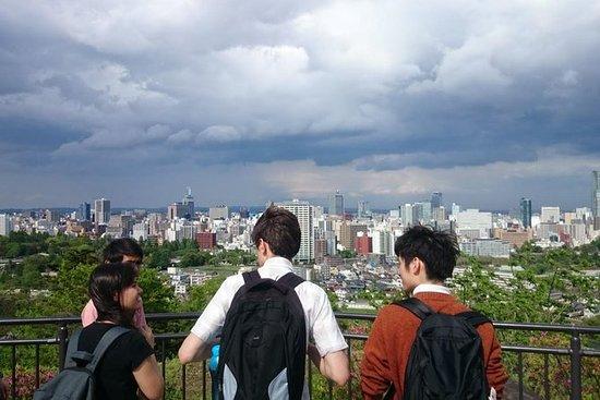 1-dagers Private Sendai Tour