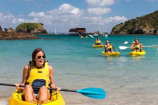 在岛屿湾享用午餐的全日冒险之旅