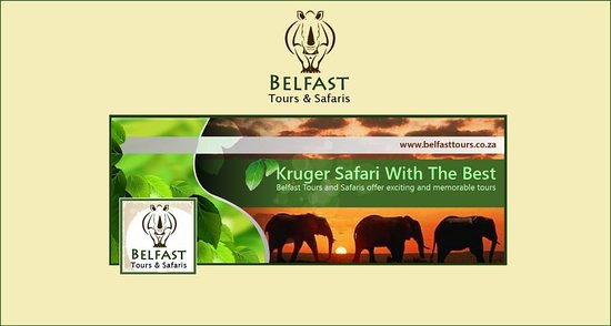 ‪Belfast tours and safaris‬