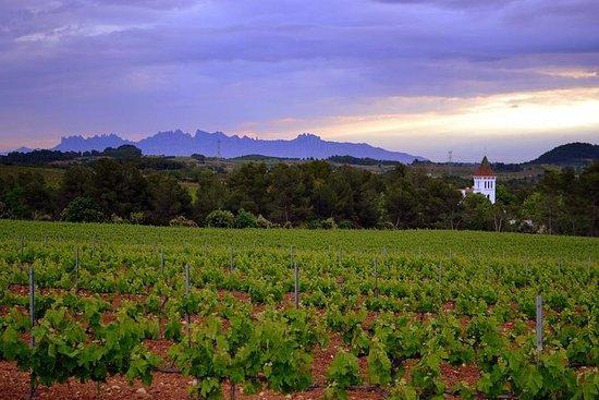 Visite de Montserrat et visite...