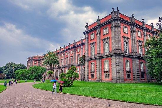 Tour privato del Museo nazionale di