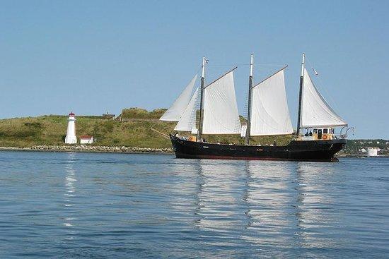 Tallskip Silva Seilbåt Cruise