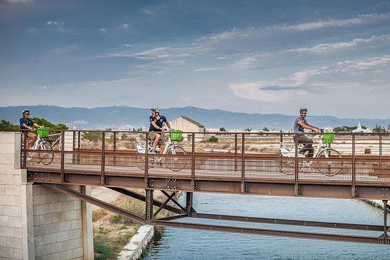 Tour Naturalistico in bici elettrica