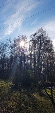 Parco della Vernavola: PARCO