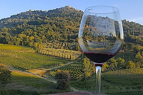 Montepulciano Wine Tour (3 vignobles...
